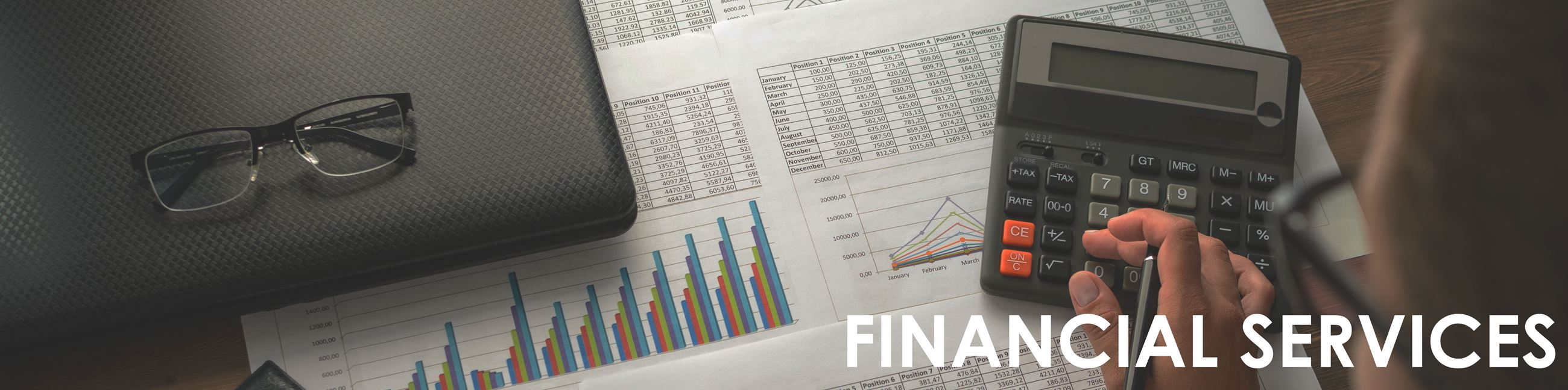 """Financial Services"" image of financial charts"