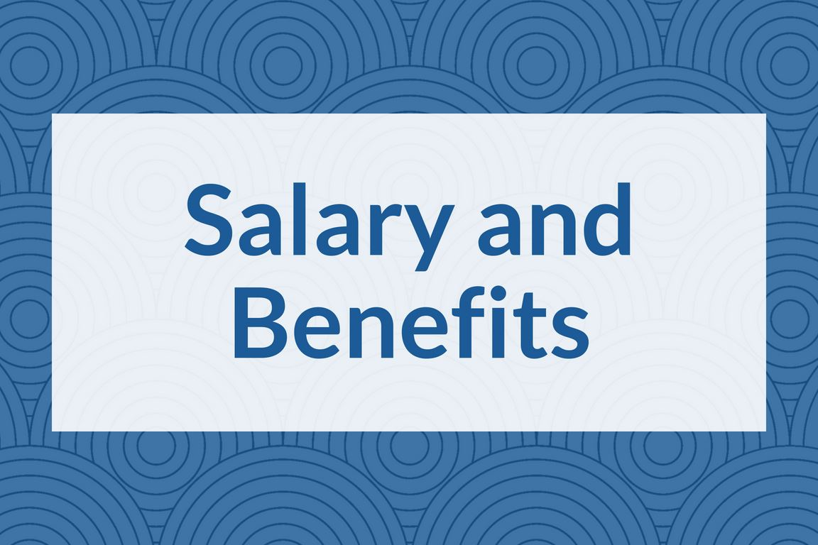 """Salary and Benefits"" graphic icon"
